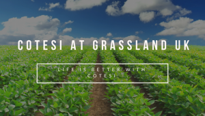 Cotesi at Grassland UK